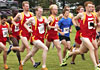 Cyclone cross country